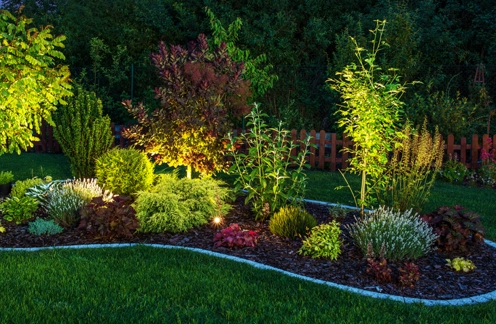garden bed with landscape lighting